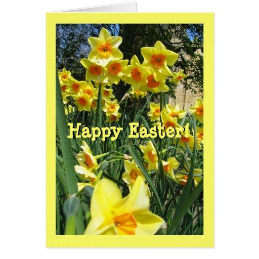 Yellow Easter Daffodil Field Custom Greeting Cards