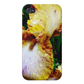 Yellow Edged Case For iPhone 4