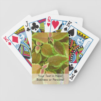 Yellow edged coleus plant bicycle playing cards