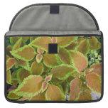 Yellow edged coleus plant MacBook pro sleeve