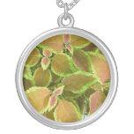 Yellow edged coleus plant necklace