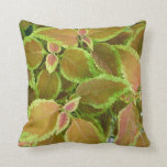 Yellow edged coleus plant pillow