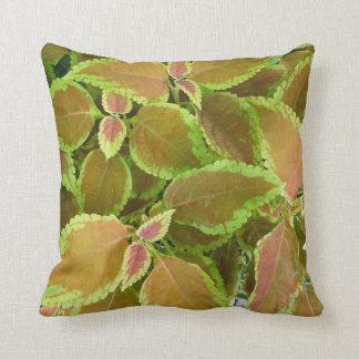 Yellow edged coleus plant throw pillow