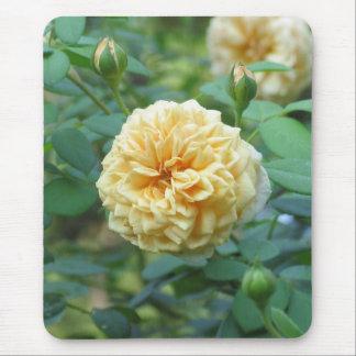 Yellow English Rose Mouse Pad