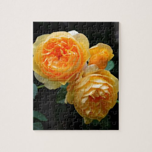 Yellow English Roses Jigsaw Puzzle