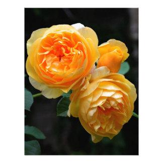 Yellow English Roses Letterhead