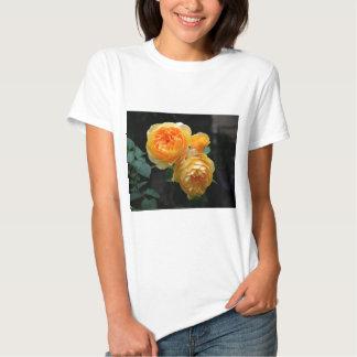 Yellow English Roses T Shirt