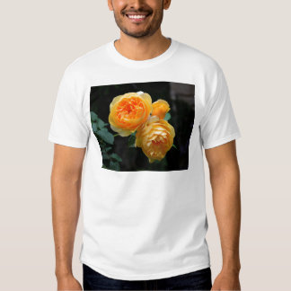 Yellow English Roses Tee Shirt