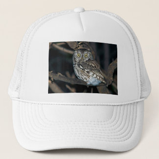 Yellow Eyed Eastern Screech Owl at Midnight Trucker Hat
