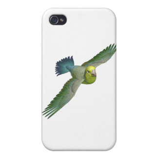 Yellow-Faced Parrotlet Cases For iPhone 4