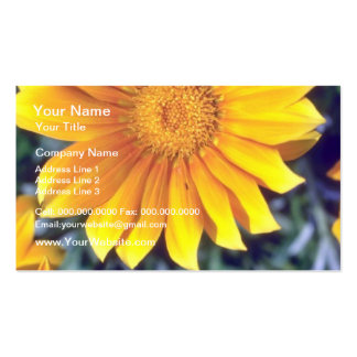 yellow Facing the sun flowers Business Card