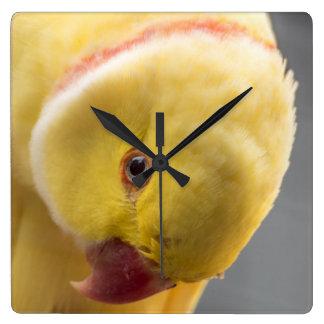 Yellow Fellow Square Wall Clock