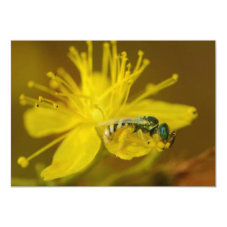 Yellow Female Bee Collecting Pollen Personalized Invitations