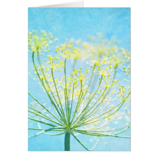 Yellow Fennel Flowers on Blue Note Card