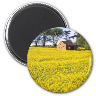 yellow Field of yellow rapeseed in North Yorkshire Magnets