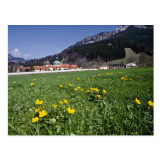 yellow Field With Ettal Monastery, Bavaria flowers Postcard
