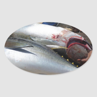 yellow fins tuna oval sticker