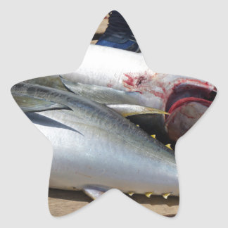 yellow fins tuna star sticker