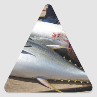 yellow fins tuna triangle sticker