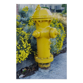 Yellow fire hydrant and wild flowers poster