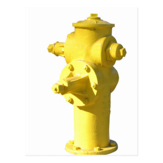 Yellow Fire Hydrant Postcard