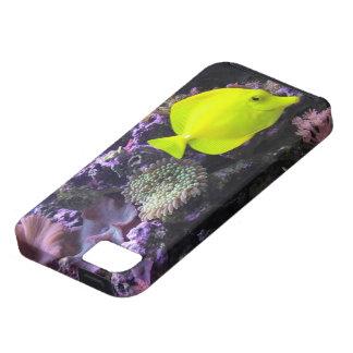 Yellow fish iPhone 5 case