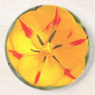 Yellow flamed tulip coaster