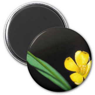 Yellow Flax 2 Inch Round Magnet
