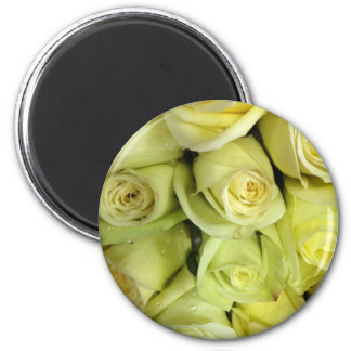 Yellow floral roses magnet