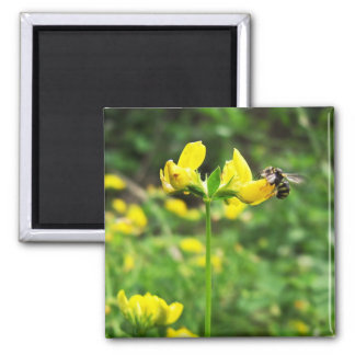 Yellow Flower and Wasp close up macro shoot photo 2 Inch Square Magnet