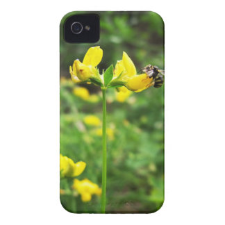Yellow Flower and Wasp close up macro shoot photo iPhone 4 Case-Mate Case