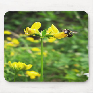 Yellow Flower and Wasp close up macro shoot photo Mousepads