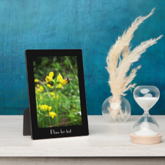Yellow Flower and Wasp close up macro shoot photo Photo Plaques