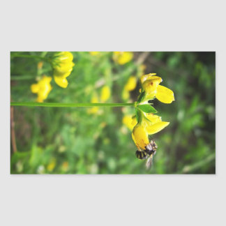 Yellow Flower and Wasp close up macro shoot photo Rectangular Sticker