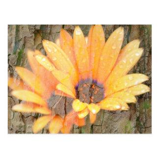 Yellow Flower Bark Post Card
