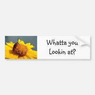 Yellow flower beetle bumper sticker