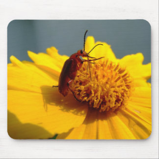Yellow flower beetle mouse pad