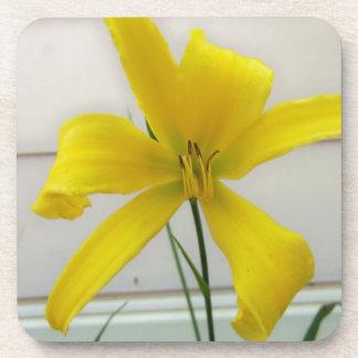 yellow flower beverage coaster