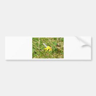 Yellow Flower Blue Butterfly Bumper Sticker