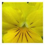Yellow Flower Custom Invite
