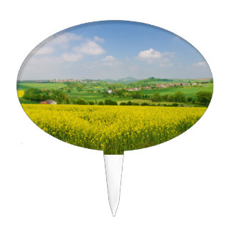 Yellow Flower Fields Overlooking Warburg Germany Cake Topper