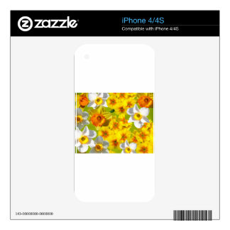Yellow Flower Graphic Decal For The iPhone 4