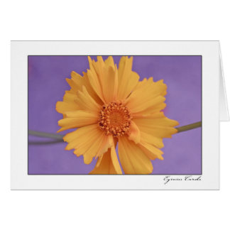 Yellow Flower Greeting Cards