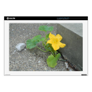 """Yellow Flower Grows In Concrete Skin For 17"""" Laptop"""