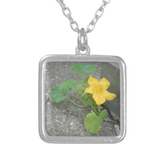 Yellow Flower Grows In Concrete Square Pendant Necklace