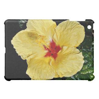 Yellow flower hybrid hibiscus flowers iPad mini cases