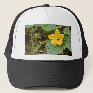 yellow flower in the garden trucker hat