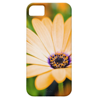 yellow flower iPhone 5 cover