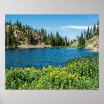 Yellow Flower Lake // Mountain Landscape