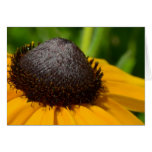 Yellow Flower Macro Stationery Note Card